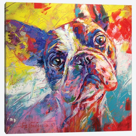 French Bulldog Canvas Print #JCF28} by Jos Coufreur Canvas Wall Art