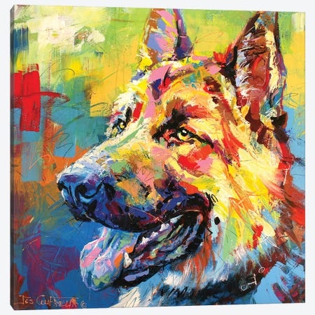 German Shepherd Canvas Print #JCF31} by Jos Coufreur Art Print