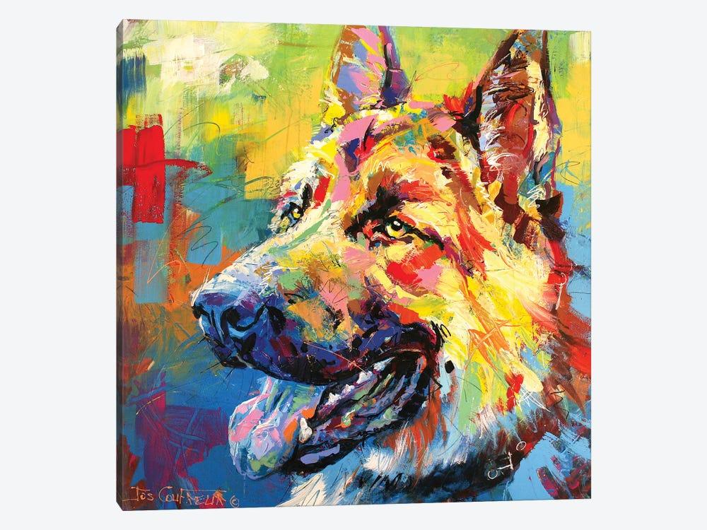 German Shepherd by Jos Coufreur 1-piece Canvas Print