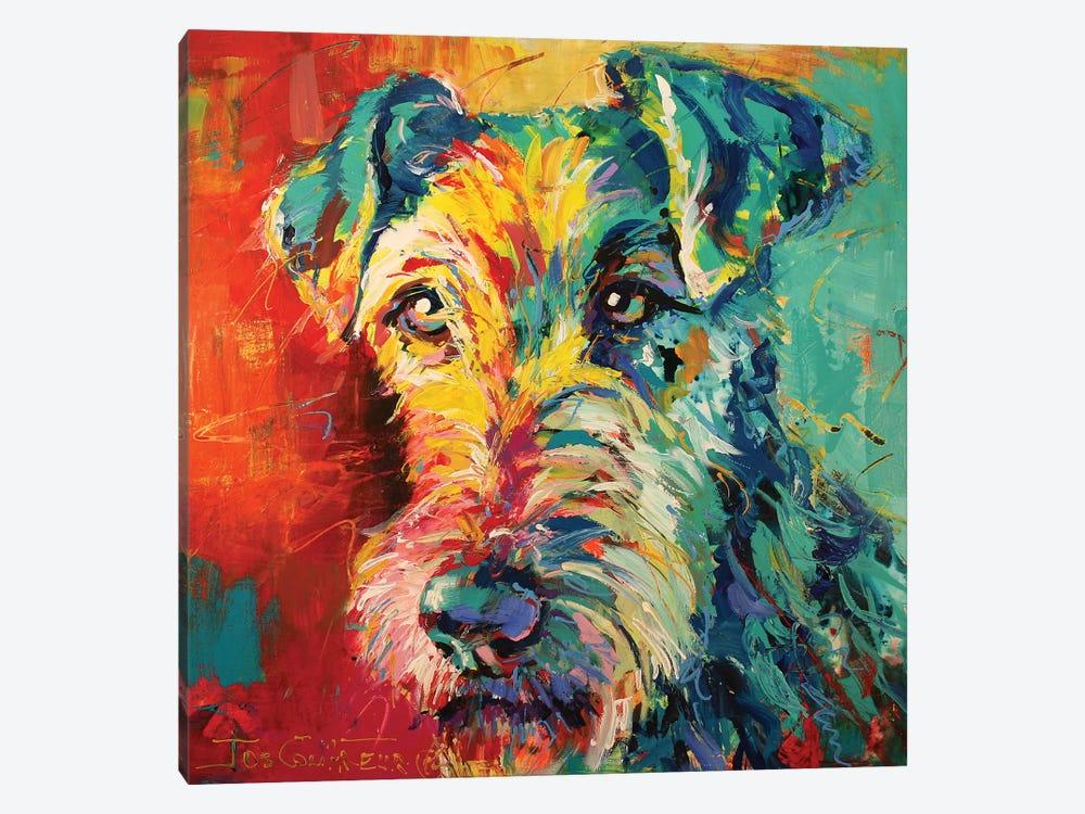 Irish Terrier by Jos Coufreur 1-piece Canvas Art Print