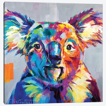 Koala I Canvas Print #JCF39} by Jos Coufreur Canvas Art Print