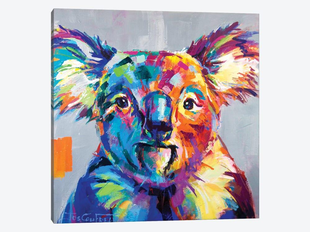 Koala I by Jos Coufreur 1-piece Canvas Print