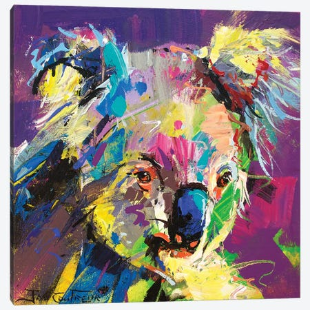 Koala VIII 3-Piece Canvas #JCF41} by Jos Coufreur Canvas Art
