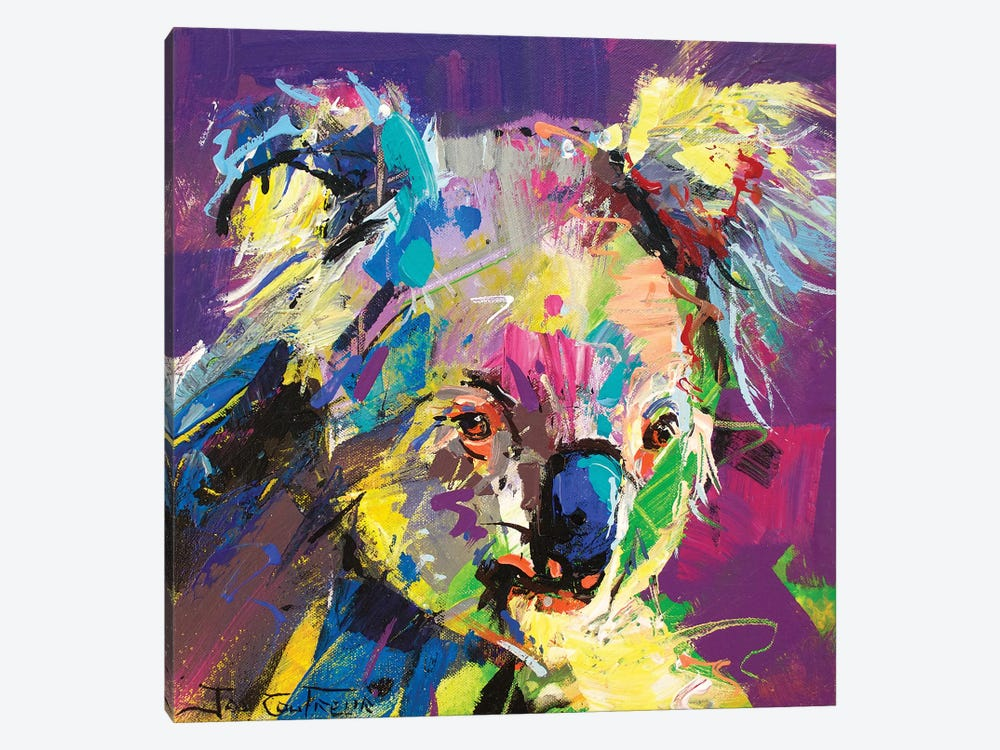 Koala VIII by Jos Coufreur 1-piece Canvas Artwork