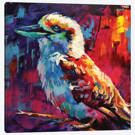 Kookaburra Canvas Print #JCF43} by Jos Coufreur Canvas Wall Art