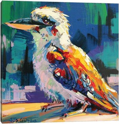 Kookaburra V Canvas Art Print