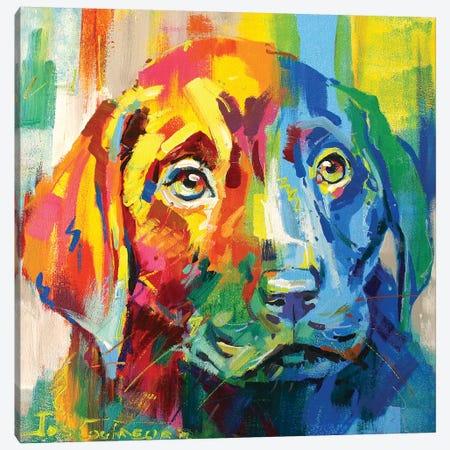 Labrador Puppy I Canvas Print #JCF46} by Jos Coufreur Canvas Art Print