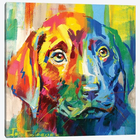 Labrador Puppy I Canvas Print #JCF46} by Jos Coufreur Canvas Art Print