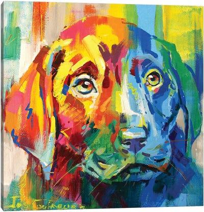 Labrador Puppy I Canvas Art Print