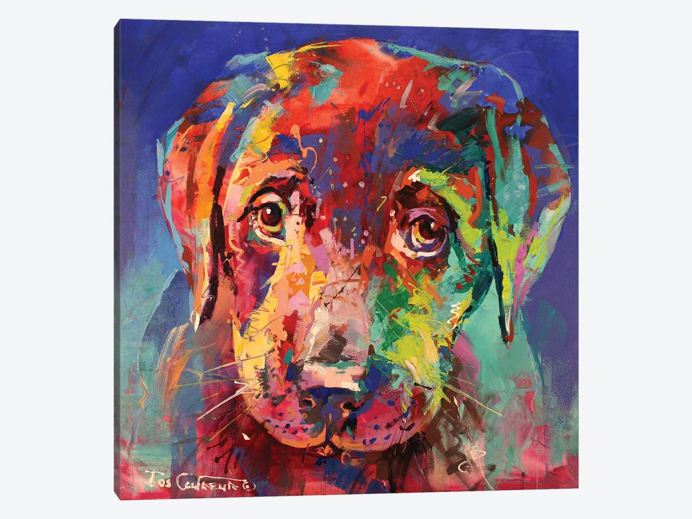 Labrador Puppy II by Jos Coufreur 1-piece Canvas Wall Art