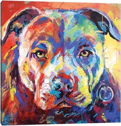 Staffordshire Bull Terrier Canvas Art Print