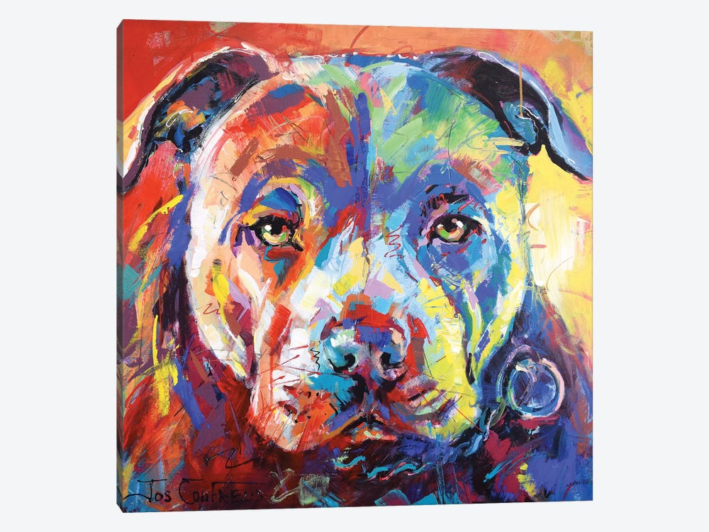 Staffordshire Bull Terrier by Jos Coufreur 1-piece Canvas Art Print
