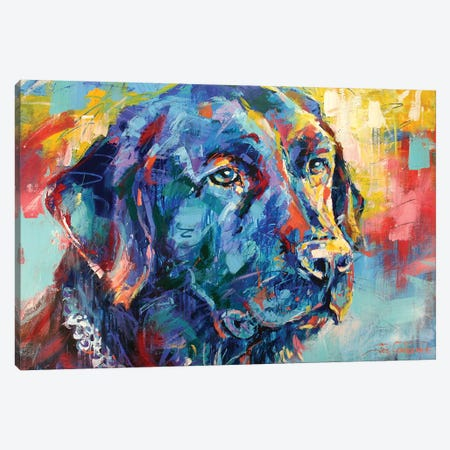 Black Labrador Canvas Print #JCF7} by Jos Coufreur Canvas Print