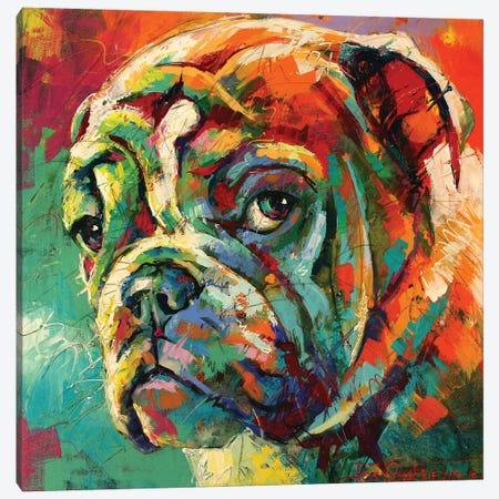 Boxer Canvas Print #JCF92} by Jos Coufreur Canvas Art Print
