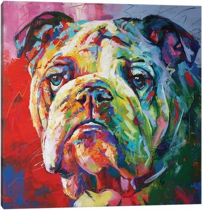 Bulldog Canvas Art Print