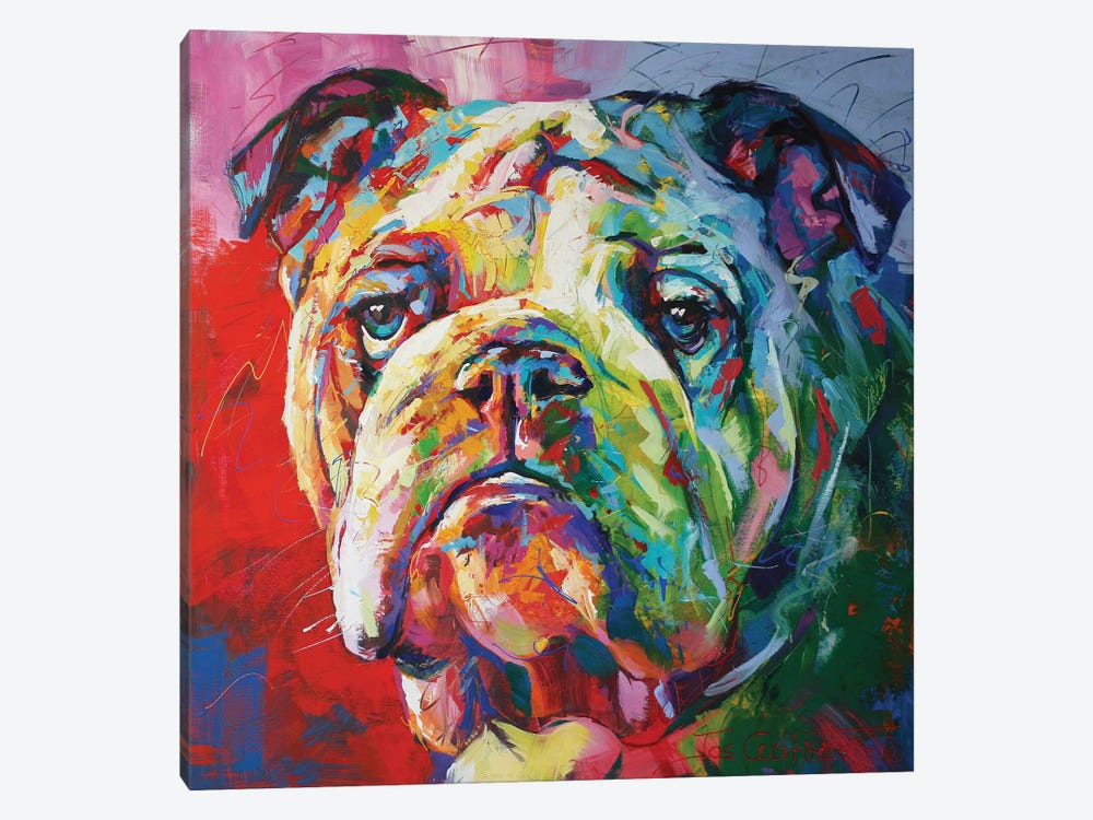 Bulldog by Jos Coufreur 1-piece Canvas Print