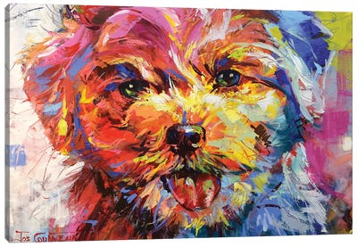 Bichon Frisé Canvas Art Print