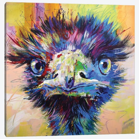 Emu X Canvas Print #JCF99} by Jos Coufreur Art Print
