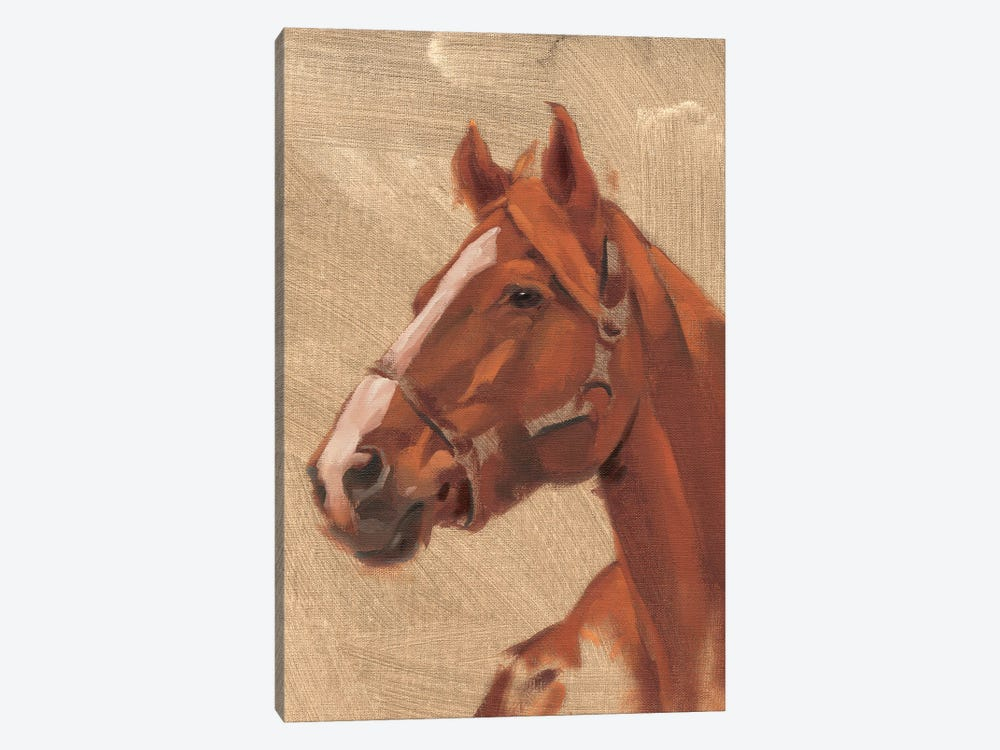 Thoroughbred I by Jacob Green 1-piece Canvas Artwork