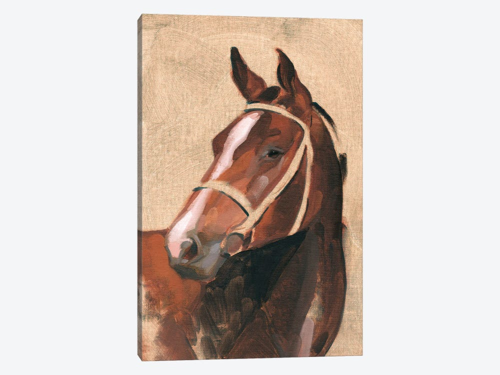 Thoroughbred III by Jacob Green 1-piece Canvas Wall Art