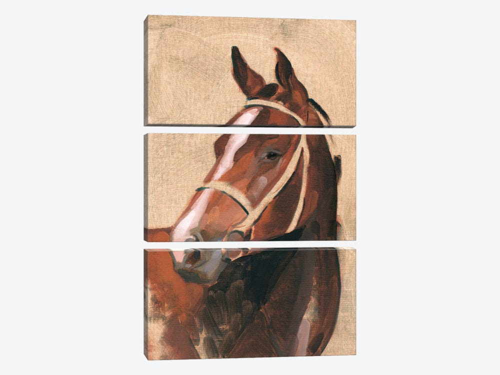 Thoroughbred III by Jacob Green 3-piece Canvas Artwork