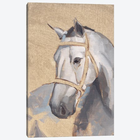 Thoroughbred V Canvas Print #JCG108} by Jacob Green Canvas Art Print