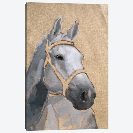 Thoroughbred VI Canvas Print #JCG109} by Jacob Green Art Print