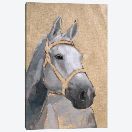 Thoroughbred VI Canvas Print #JCG109} by Jacob Green Art Print