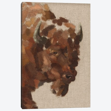 Tiled Bison I Canvas Print #JCG110} by Jacob Green Canvas Wall Art