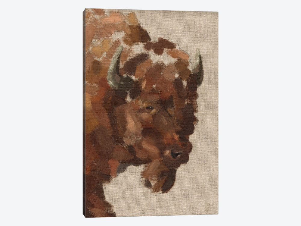 Tiled Bison I by Jacob Green 1-piece Canvas Print