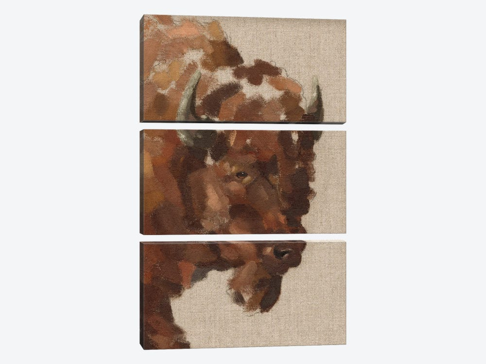Tiled Bison I by Jacob Green 3-piece Canvas Art Print
