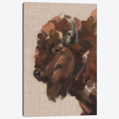Tiled Bison II Canvas Print #JCG111} by Jacob Green Canvas Wall Art