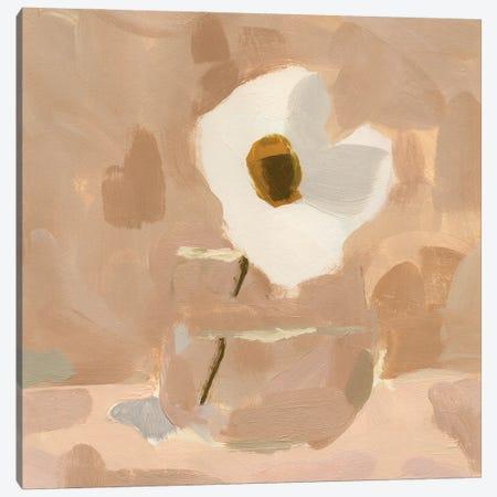 Canary Island Marguerite I Canvas Print #JCG120} by Jacob Green Art Print