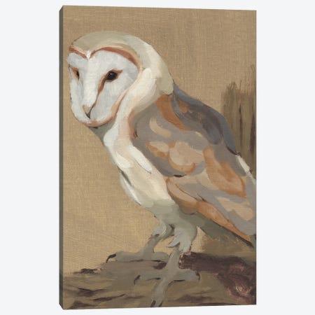 Common Barn Owl Portrait II Canvas Print #JCG123} by Jacob Green Art Print
