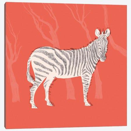 Plains Zebra I Canvas Print #JCG153} by Jacob Green Canvas Artwork