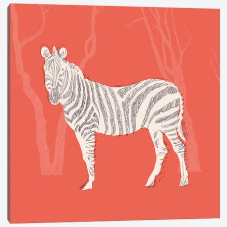 Plains Zebra II Canvas Print #JCG154} by Jacob Green Canvas Print