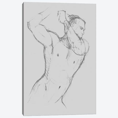 Male Torso Sketch I Canvas Print #JCG189} by Jacob Green Canvas Print