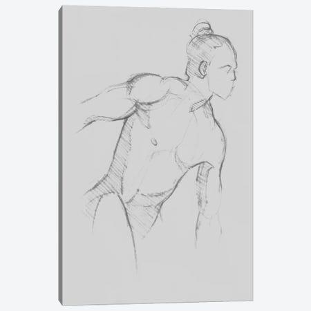 Male Torso Sketch II Canvas Print #JCG190} by Jacob Green Canvas Art