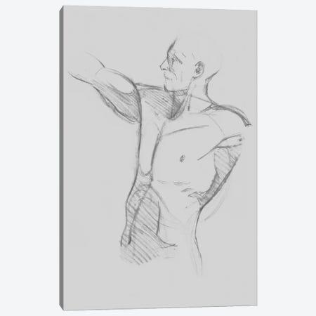 Male Torso Sketch IV Canvas Print #JCG192} by Jacob Green Canvas Art