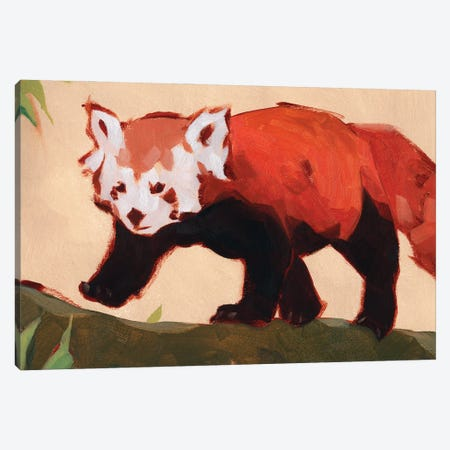 Red Panda II Canvas Print #JCG205} by Jacob Green Canvas Art Print