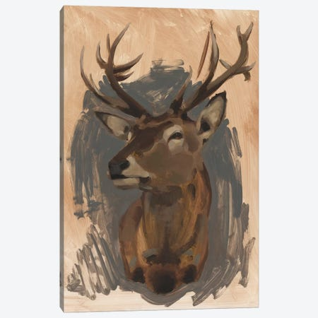 Red Deer Stag II Canvas Print #JCG24} by Jacob Green Canvas Artwork