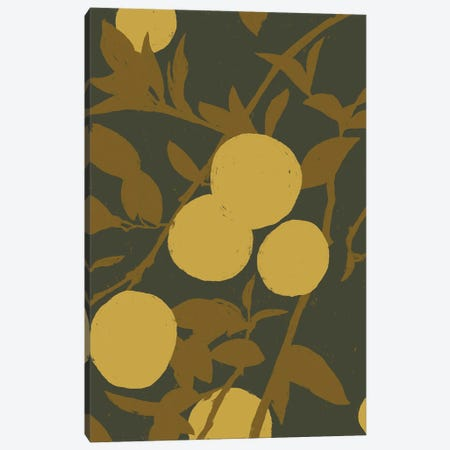 Golden Satsuma I Canvas Print #JCG52} by Jacob Green Canvas Artwork