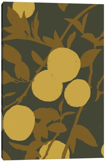 Golden Satsuma I Canvas Art Print