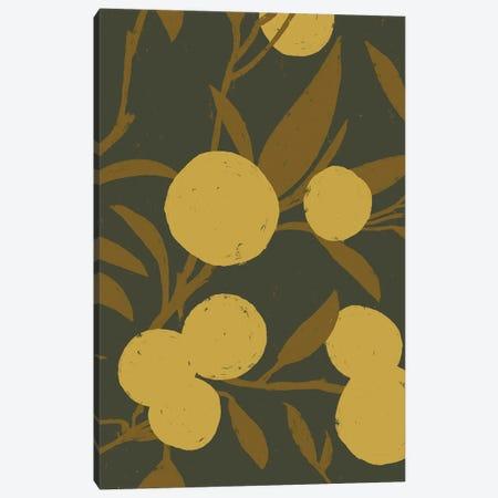 Golden Satsuma II Canvas Print #JCG53} by Jacob Green Canvas Wall Art