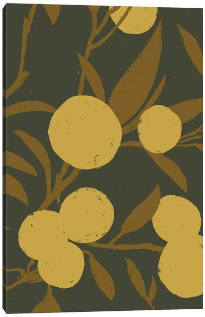 Golden Satsuma II Canvas Art Print