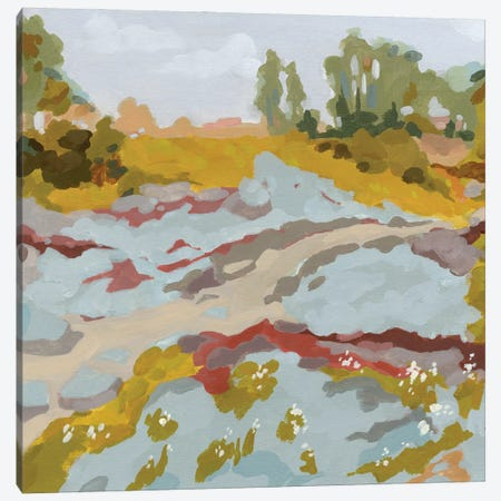 Lowland River I Canvas Print #JCG58} by Jacob Green Canvas Artwork