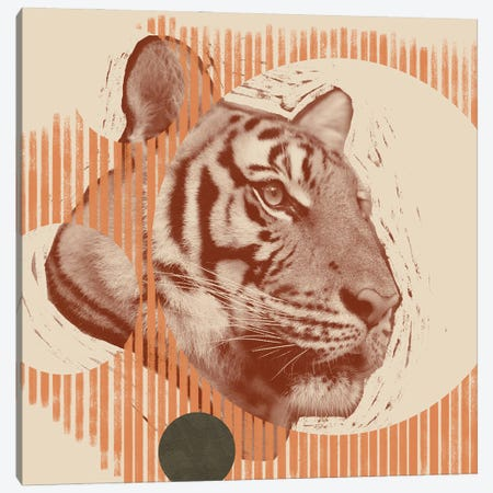 Pop Art Tiger I 3-Piece Canvas #JCG60} by Jacob Green Canvas Print