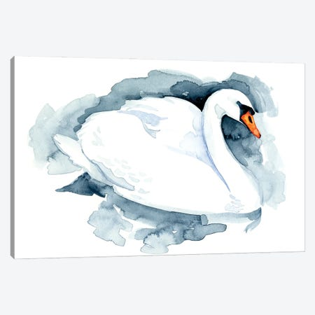 Silverlake Swan I Canvas Print #JCG64} by Jacob Green Canvas Artwork