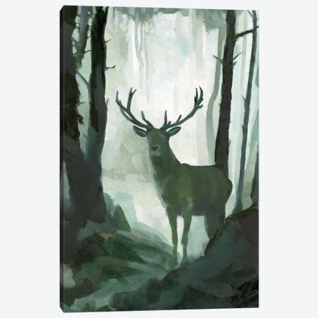 Elemental Animals I Canvas Print #JCG78} by Jacob Green Canvas Artwork