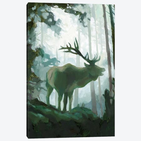 Elemental Animals II Canvas Print #JCG79} by Jacob Green Canvas Artwork